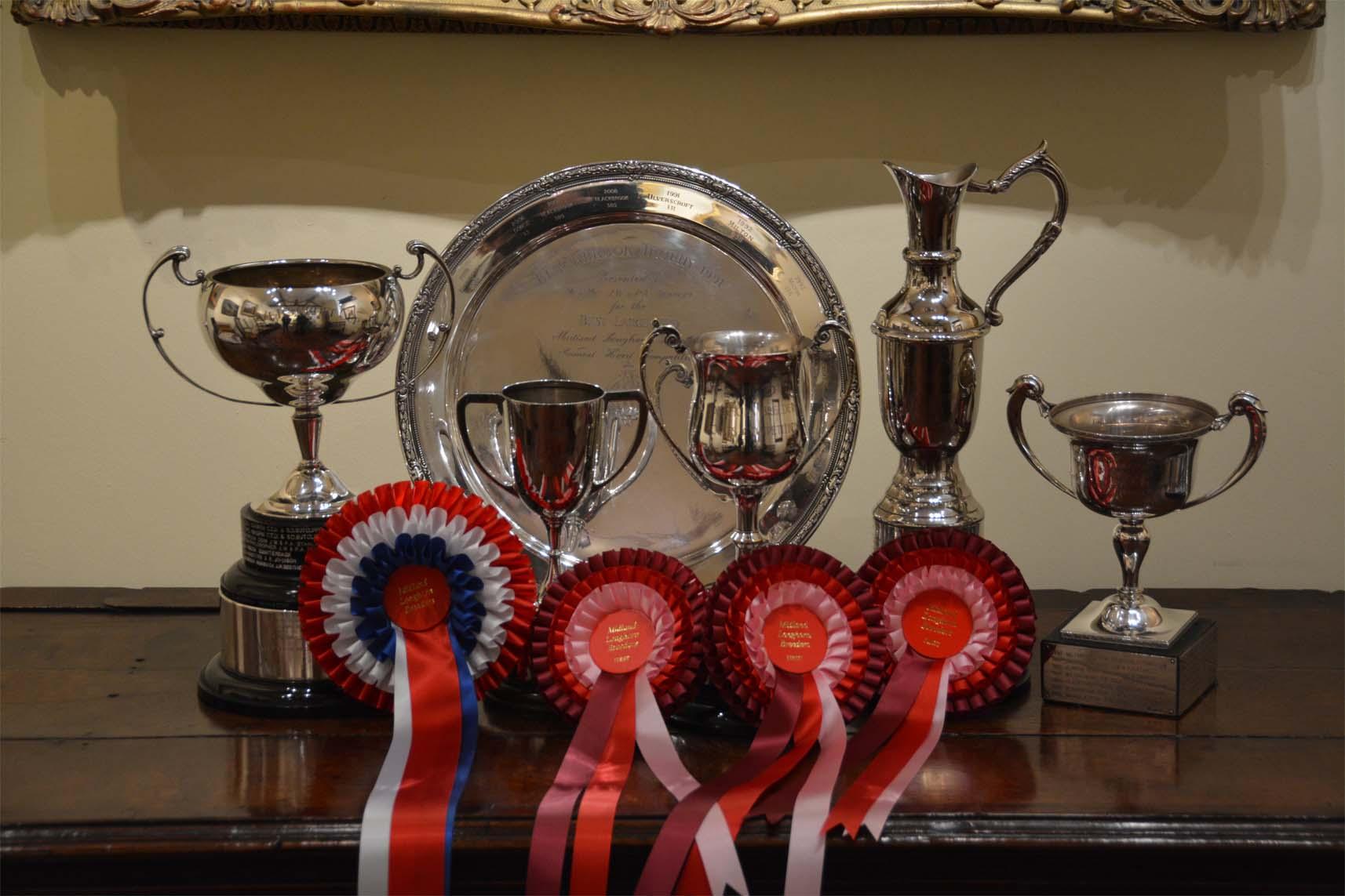 Blackbrook Longhorns Champion Herd Midlands Winner